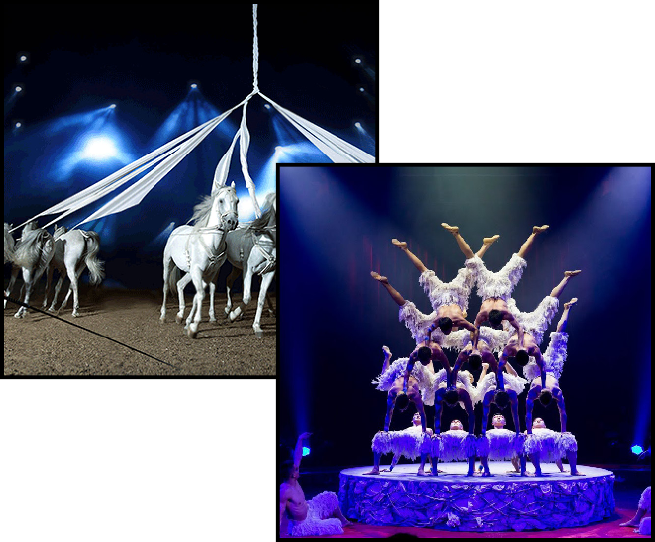 Voluit - dagjes weg - circus